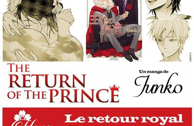 The return of the prince chez Boy's Love IDP