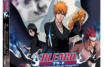 Bleach 2 - The DiamondDust Rebellion vostfr
