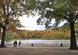 Fall foliage season is excellent to visit New York...