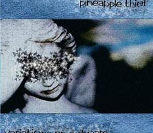 The Pineapple Thief : la discographie