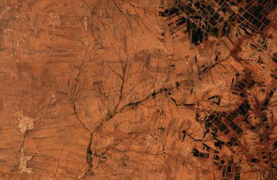 22 avril 2016 : le Jour de la Terre avec un nouveau quiz image