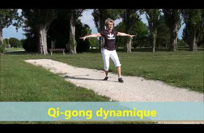 QIGONG TECHNIQUES DE SANTE PREVENTION CONTRE LES GRAVES MALADIES