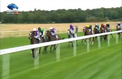 Ascot Champions Day en 12 Objections , by Marie