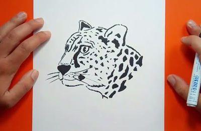 Como dibujar un leopardo paso a paso