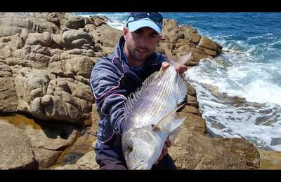 Sparidé Surfcasting Team Pescador13 Fishing sea angling