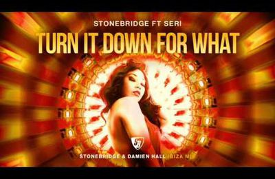 « Turn It Down For What » la nouvelle bombe House de Stonebridge !