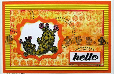 le cactus, le printemps, envie de créations colorées !
