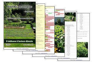 Guide pratique gratuit du jardin potager bio