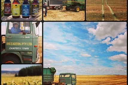 brewstagram:  Barley malt harvesting on family farm by van_dieman http://instagr.am/p/VRFNTLDvsJ/