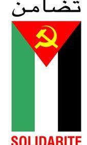 Palestine vaincra - Manifestation du 10 janvier 2009
