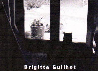 """Parution à L'Ours Blanc : """"Soluble"""", un roman de Brigitte Guilhot"""