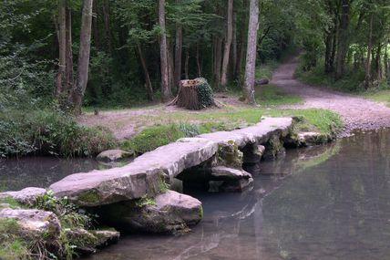 Le pont Thierry