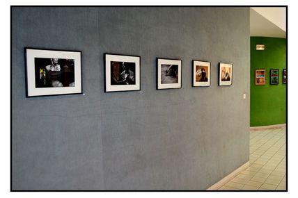 Exposition 2010 des artistes stéoruellans