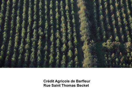 EXPOSITION - Barfleur - Crédit Agricole