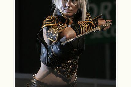 Dark Elf (Blade Dancer) de Lineage II
