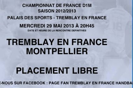 TREMBLAY vs MONTPELLIER AHB (LNH - 29.05.2013)