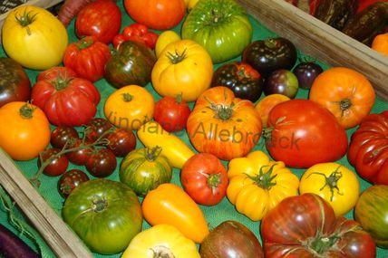 Festival : Cultivons durable, mangeons responsable le 26/06 à partir de 11H à Bruxelles