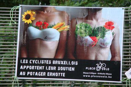 La Masse Critique débarque aux Potagers Collectifs en danger dans le quartier Boendael-Ernotte à Ixelles