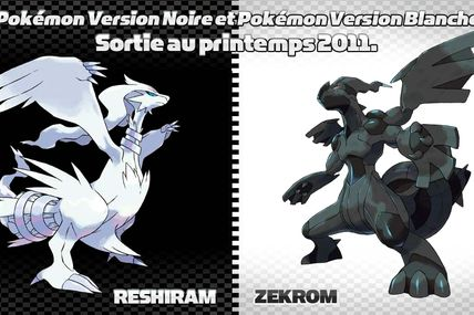Pokemon Version Blanche
