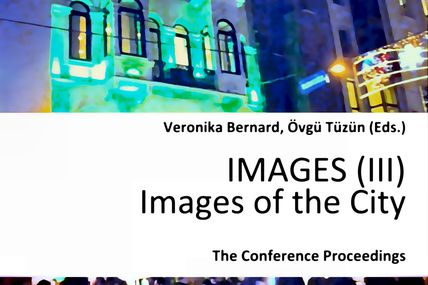 The 2013 IMAGES Project Publication