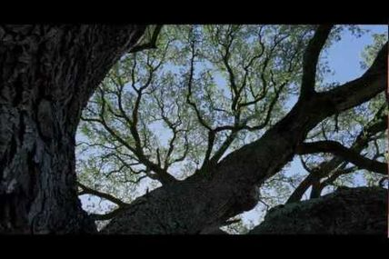 """Funeral Canticle (From """"The Tree of Life"""")..."""