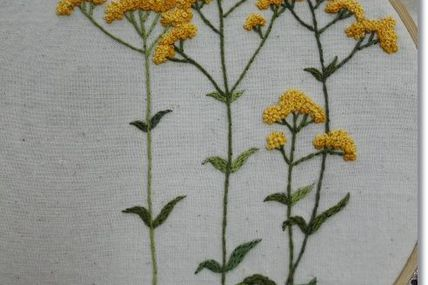 Tansy embroidery | S