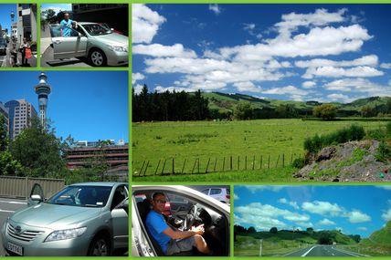 Rotorua #1 : Skyline