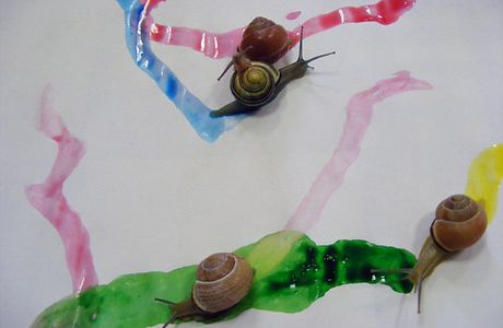 ...snail painting....