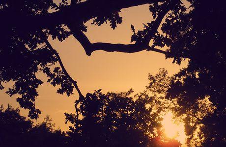...Indian Summer...