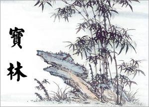 Mon prénom en chinois 宝林(Bǎo lín )
