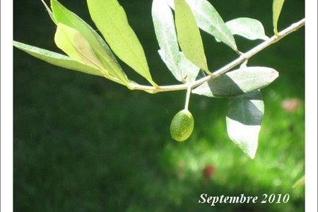 Septembre / September
