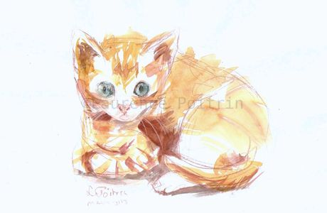 Chats Aquarelle