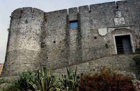 LA SPEZIA - Il gabbiano del castello di San Giorgio