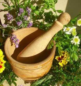 أسماء الأعشاب باللغة الشرقية ومرادفها بالمغربية