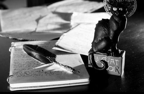 Sélection GSN 2014 au Chat Noir