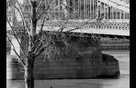 Les amoureux de Budapest