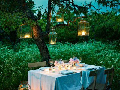 Dernières soirées au jardin...