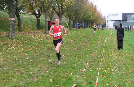 Cross de Brie Comte Robert, le 6/11/2011
