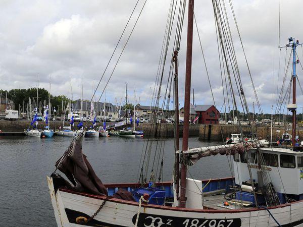 Port de Paimpol 31.08.2013