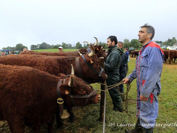 Essentiellement photos des animaux présentés par Christophe et Patricia Freyssac... mais je compléterai !