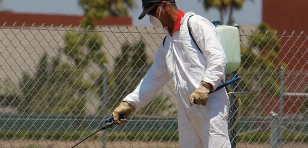 Fight Back Against Those Bugs With These Pest Control Pointers