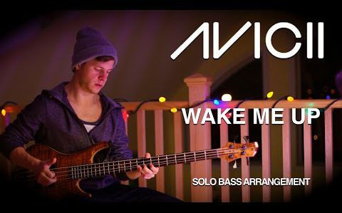 Avicii feat. Aloe Blacc - Wake Me Up [solo.bass.cover]
