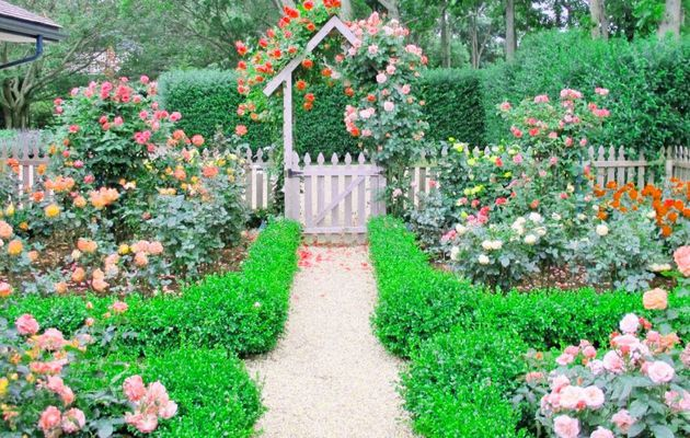 Cottage Garden Design Ideas to Add Value to Your Home
