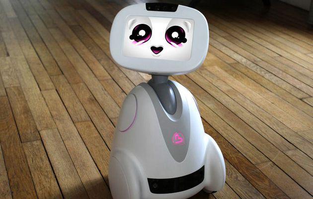 Pourriez-vous tomber amoureux de ce petit robot ?