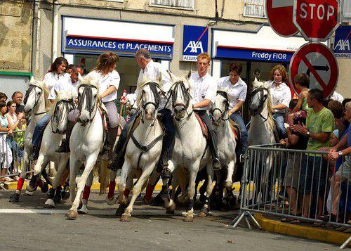 A cheval / De Brigitte Lécuyer