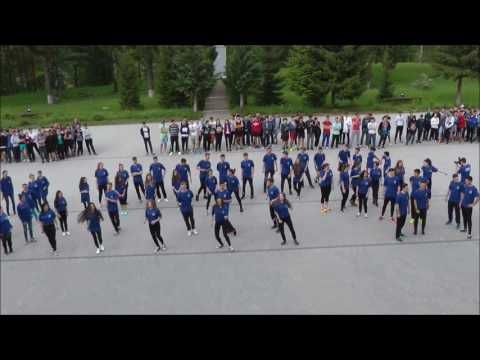 A.COY7 - Flash Mob