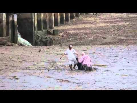 vidéo forte : un héro humble, touchant