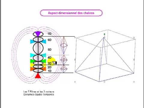 Relations entre Chakras, Merkaba et Vehicule Spatio-Temporel