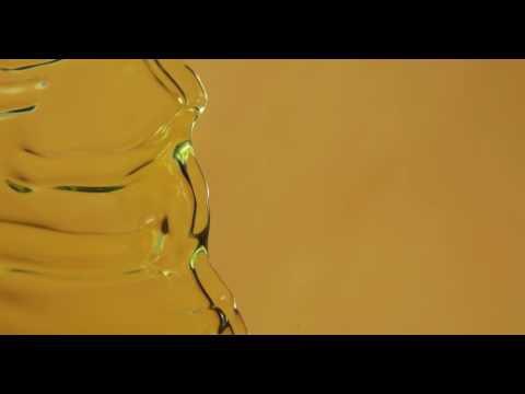 Reinier Zonneveld - Plastic People [Stil Vor Talent]