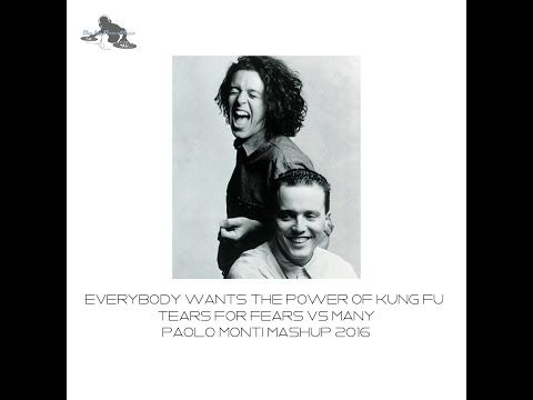 Everybody wants the power of kung fu - Tears for fears Vs many- Paolo Monti mashup 2016